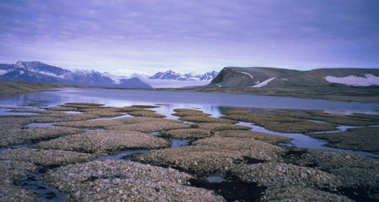 Des quantités effrayantes de mercure ont été trouvées dans le pergélisol