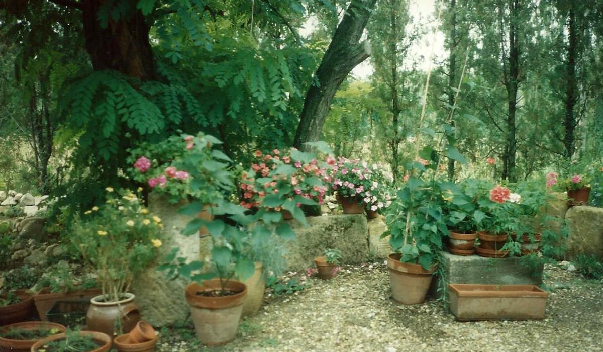 Autonomie Résilience La ferme de la Couronne Le petit Jardin dans la cours 1995