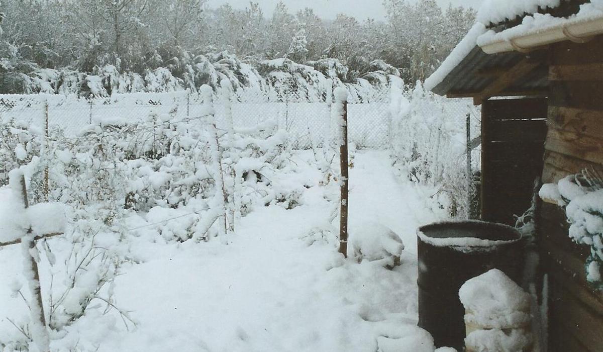 Autonomie Résilience Le jardin de la tuilerie, sous la neige