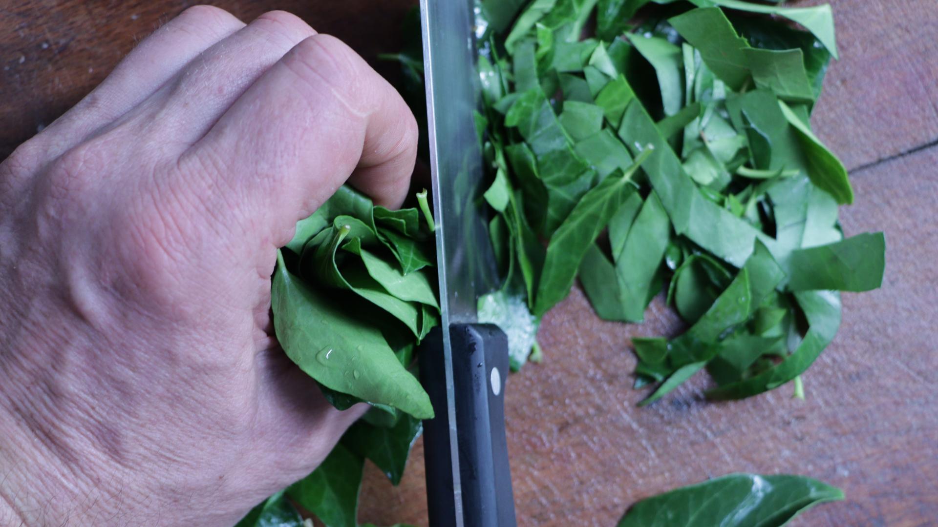 Autonomie Résilience Lessive de lierre Découpe des feuilles